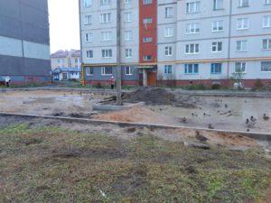 Утки приводнились прямо в одном из городских дворов Вологды