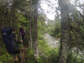 Экспедиция на Перевал Дятлова - 2019. Тропа вдоль Ауспии